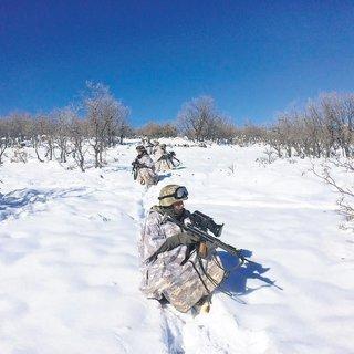 3 ayaklı kıskaçla PKK'ya ağır darbe