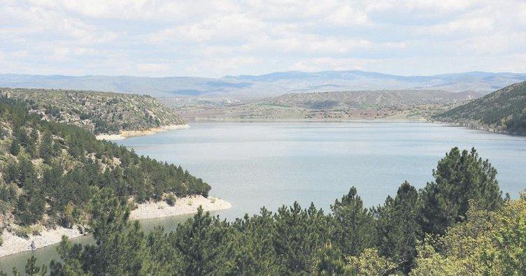 Çöl sıcaklarında rekor su tüketimi
