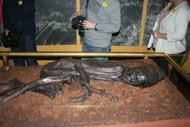 2 bin 400 yaşındaki vejetaryen