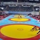 Milli takım Balkan şampiyonu