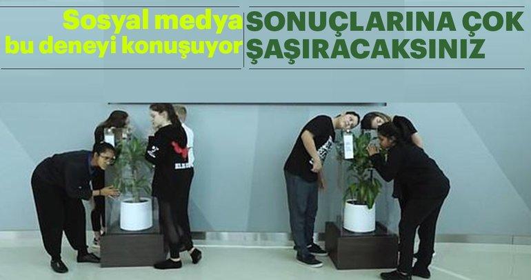 Sosyal medya bu deneyi konuşuyor