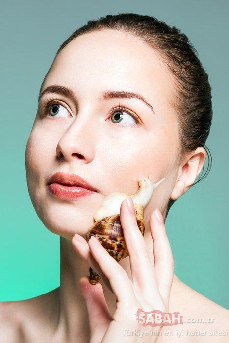 Salyangoz kremi nedir? Salyangoz kreminin cilde faydaları
