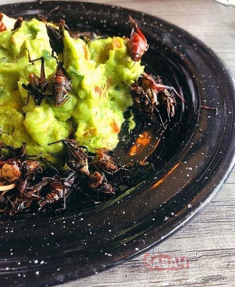 Eda Taşpınar Meksika tatilinde ne yiyeceğini şaşırdı! Sosyetik güzel Eda Taşpınar marjinallikte sınırları zorladı