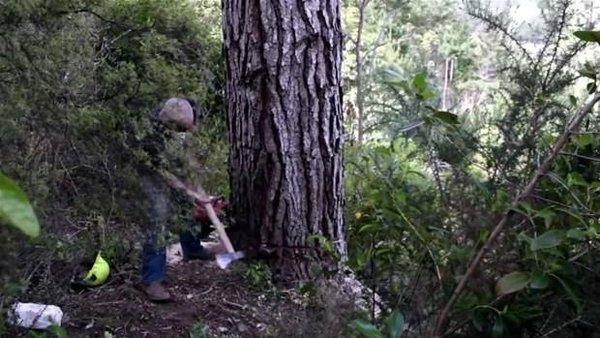 Ağaçtan yaptığı şeye bakın!
