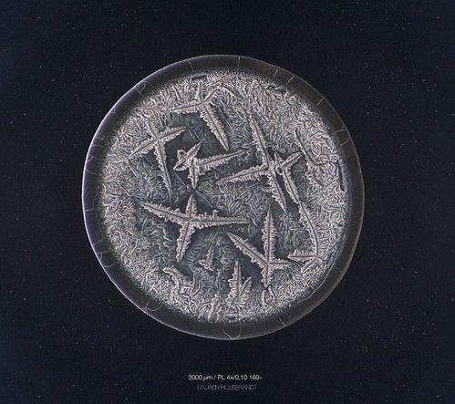 Mikroskobik ortamda gözyaşını fotoğrafladı, eşsiz görüntüler ortaya çıktı