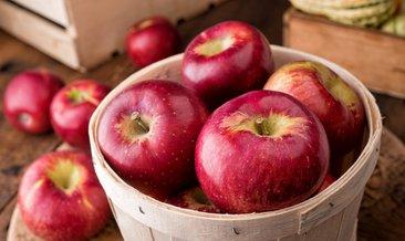Sonbaharda yenmesi gereken 6 önemli besin!