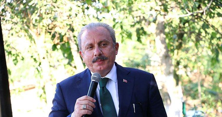 Başkan Erdoğan'ın Fransız mallarını boykot çağrısına TBMM Başkanı Şentop'tan destek