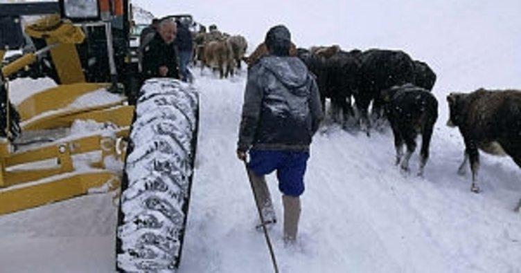 Bayburt'ta karda mahsur kalan 20 kişi kurtarıldı