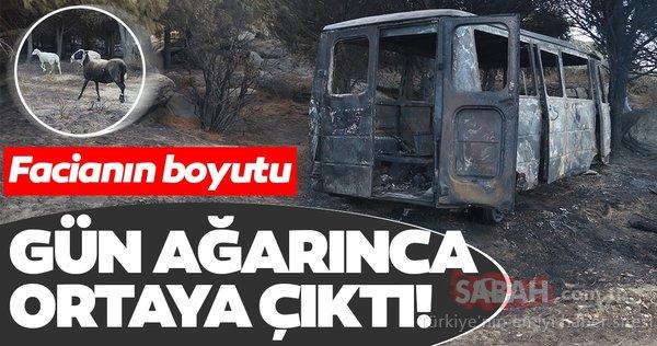 Marmara Adası'ndaki yangının boyutu gün ağarınca ortaya çıktı