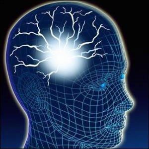 Hayati organlarımız - Beyin