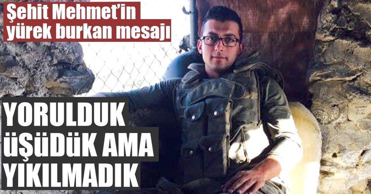 Şehit Mehmet'in yürek burkan mesajı: Yorulduk, üşüdük, ama yılmadık