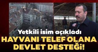 Depremde hayvanları telefon olan besicilere devlet desteği