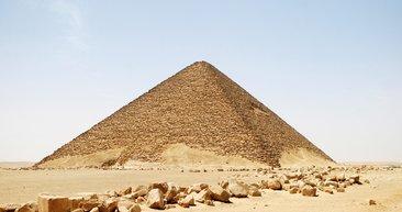 Mısır'da böcek mumyası bulundu