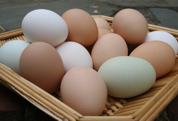 Yumurtanın sarısına dikkat!