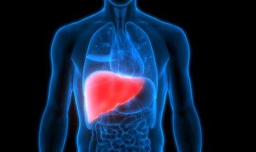 Rüyada karaciğer görmek ne anlama gelir?