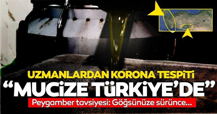 SON DAKİKA: Koronavirüse karşı kekikten sonra ikinci mucize: O da Türkiye'de yetişiyor