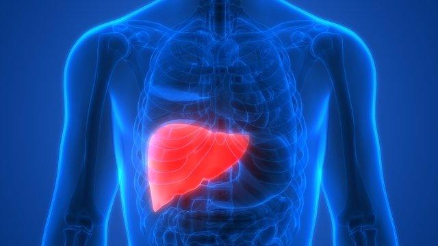 Karaciğeri bitiren beslenme alışkanlıkları