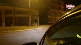 Ardahan'da şehre inen aç kurt böyle görüntülendi | Video