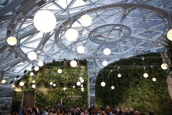 Amazon'dan yağmur ormanlarından ilham alan ofis