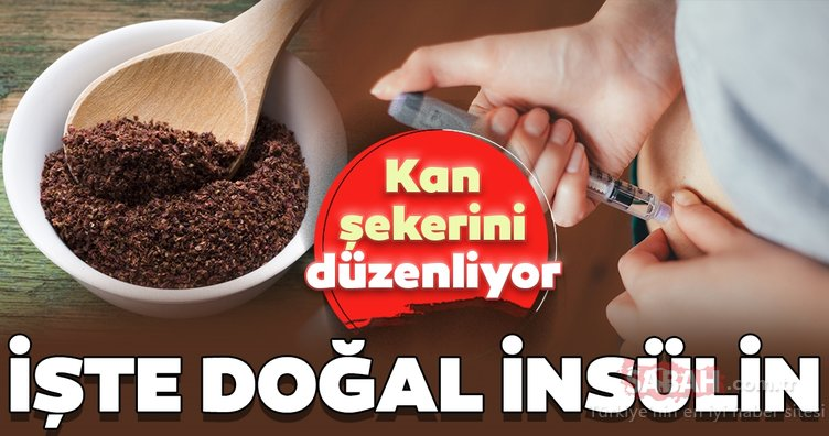Bu gıda diyabete birebir fayda sağlıyor! İşte doğal insülin...