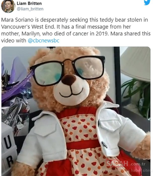 Dünyanın konuştuğu oyuncak hikayesi! Twitter'dan başladı dünya seferber oldu