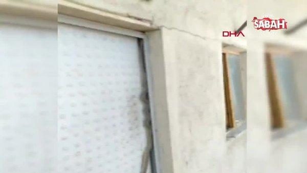 Kapıya tırmanan yılan korkuttu | Video