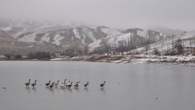 Sivas'ta akarsu ve göller buz tuttu!