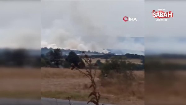 Son Dakika   Bulgaristan'da Türkiye sınırı yakınında orman yangını   Video