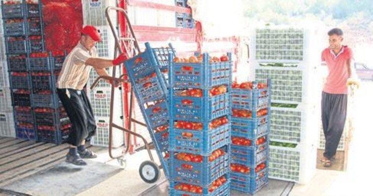 62 milyon dolarlık domates ihraç ettik