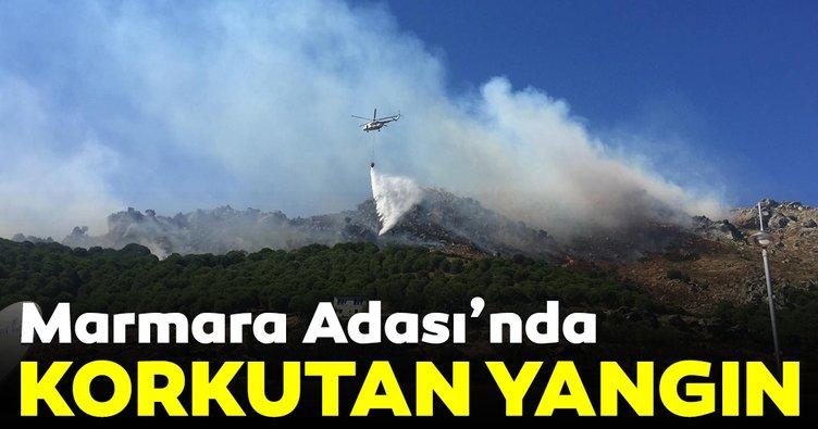 Son dakika haberi: Balıkesir Marmara Adası'nda orman yangını!