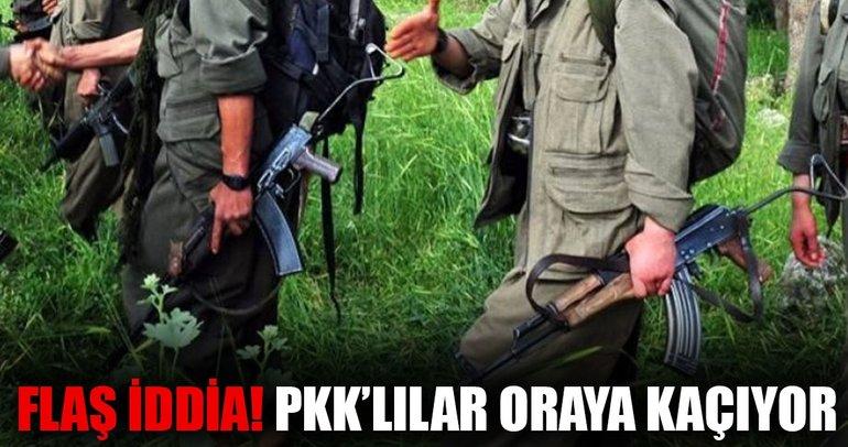 PKK'lı teröristler Ermenistan'a kaçmaya başladı