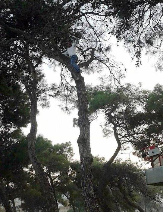 Futbolcu ağaçta mahsur kaldı