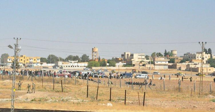 Suriye'deki mülteci kamplarında 195 Filistinli hayatını kaybetti