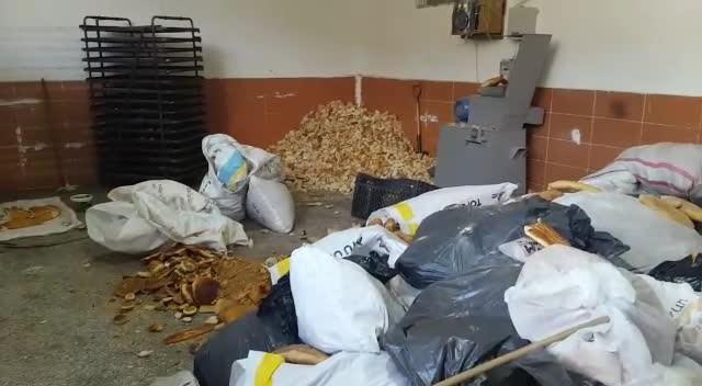 Çöpten çıkarılan ekmekleri un haline getirip pasta yapıyorlardı
