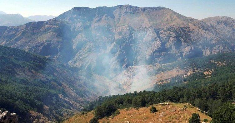 Yeşil listedeki PKK'lı terörist etkisiz hale getirildi