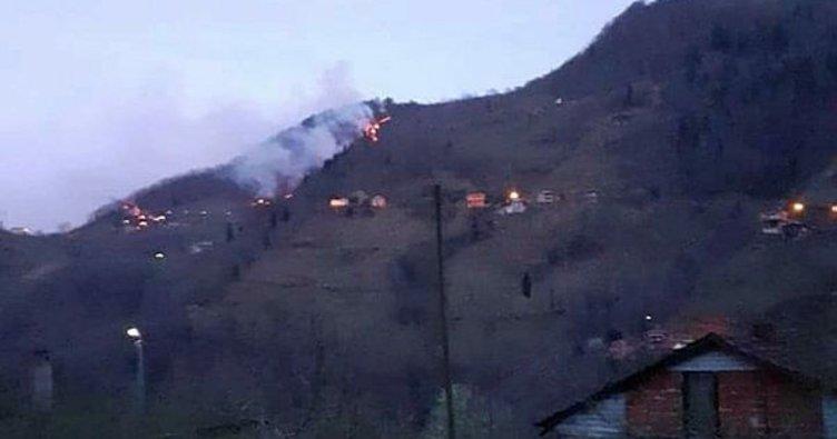 Trabzon'un Araklı ilçesinde örtü yangını çıktı