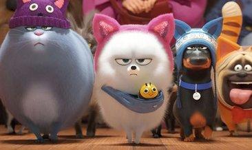 Evcil Hayvanların Gizli Yaşamı filminin konusu nedir? Evcil Hayvanların Gizli Yaşamı filminin oyuncu kadrosunda kimler var?