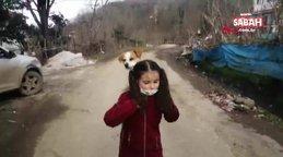 Türkiye Ordu'da hastalanan köpeğini sırtında taşıyarak veterinere götüren Cemre Su Türköz'ün görüntülerini konuşuyor