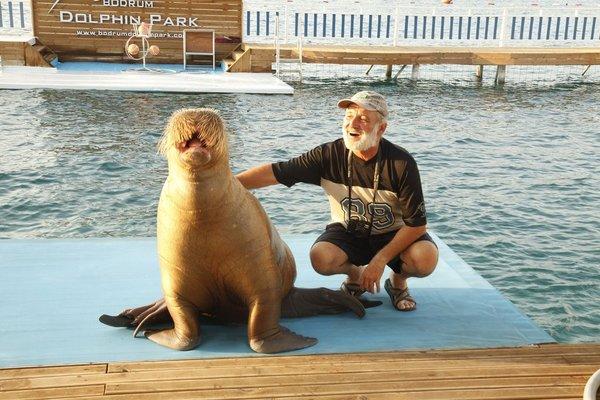 Deniz aslanı terbiyecisi