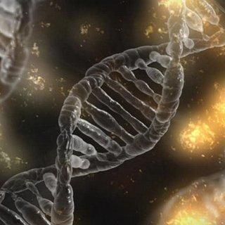 Kanserle ilgili kilit öneme sahip 11 gen keşfedildi