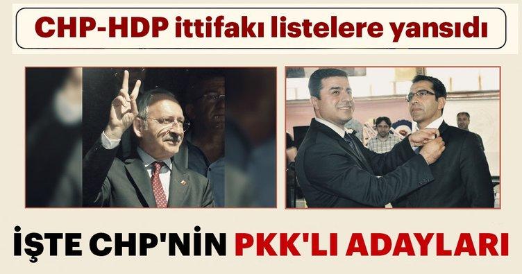 CHP'nin PKK'lı adayları