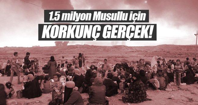 1.5 milyon Musullu için korkunç gerçek!