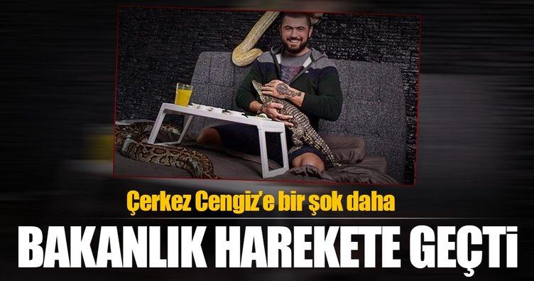 Bakanlık Çerkez Cengiz için harekete geçti!