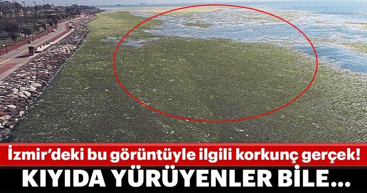 İzmir'deki ürkütücü görüntü ile korkunç gerçek ortaya çıktı