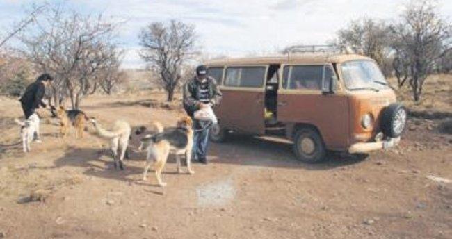 Hayvansever ailenin barınağını 3 kez yıktılar