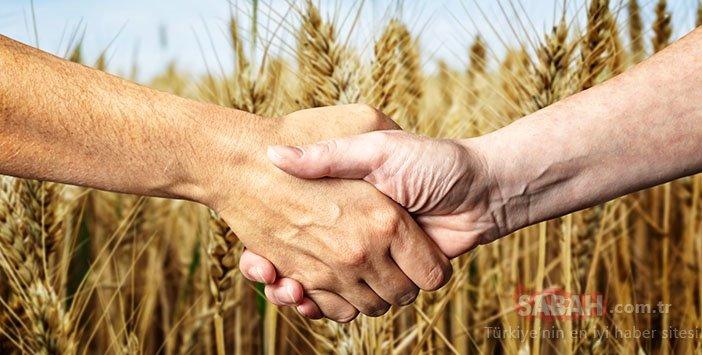 Prof Dr. Nihat Hatipoğlu yazdı: Yüce Allah'a ahdinizi diri tutun