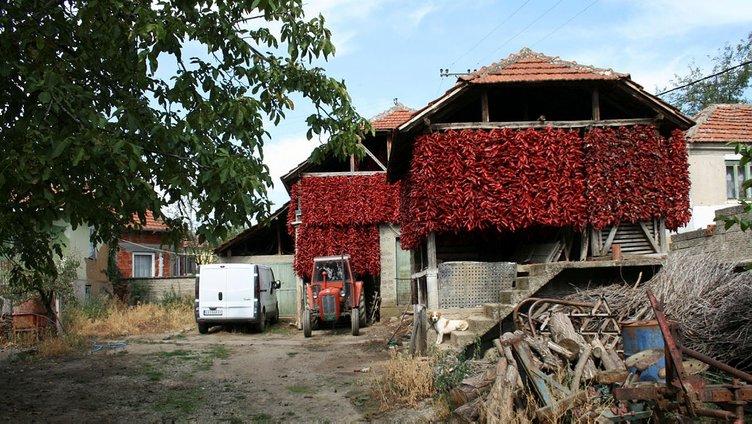 Bütün köy kırmızıya boyandı...