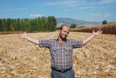 O çiftçi çalınan mısırlarına kavuştu!