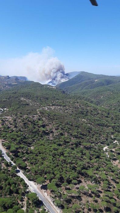 Muğla'da orman yangını! Bölgeye takviye ekipler sevk edildi