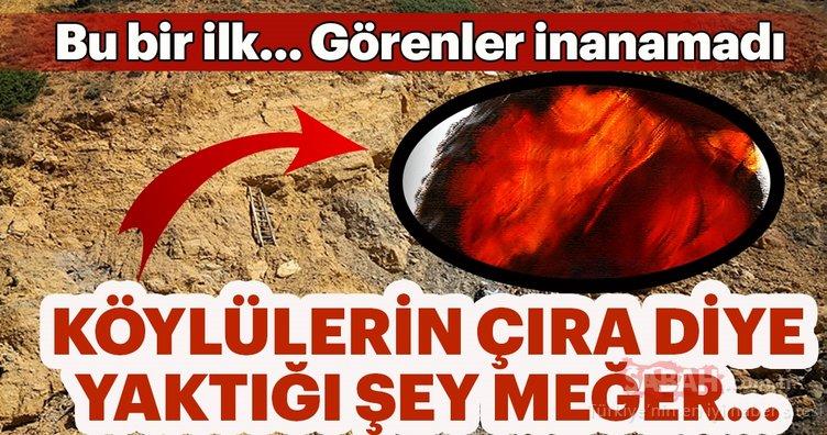 Türkiye'de ilk kez tespit edildi!